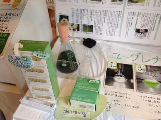 Souvenir Unik Yang Dapat Kamu Beli di Universitas Tokyo